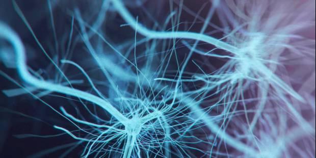 Centrum badań neuropoznawczych