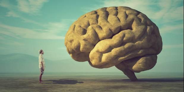 Centrum Neuronauki Behawioralnej